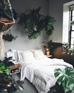 planten in je slaapkamer - urban jungle wondere woon wereld