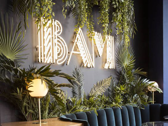 Urban Jungle – Planten in je huis zijn hot!