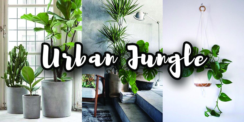 urban jungle tips en woonideen voor een natuurlijk interieur