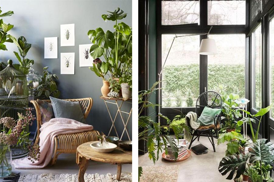 Zwarte Rieten Stoel : Rotan stoel haal de stoel op zolder maar onder het stof vandaan