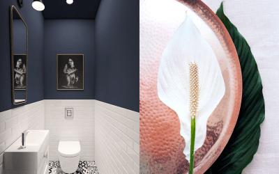 Toilet inspiratie: 10x de mooiste en meest stijlvolle inspiratie voor jouw toilet