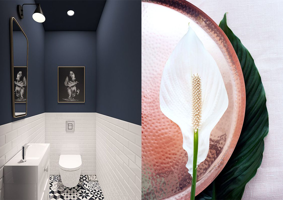 Toilet inspiratie de mooiste en meest stijlvolle inspiratie