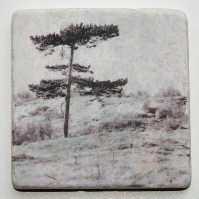 Nature Art Tile_tree_Karen Winnubst